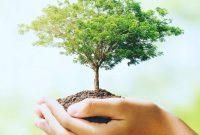 Pengertian Definisi Lingkungan hidup