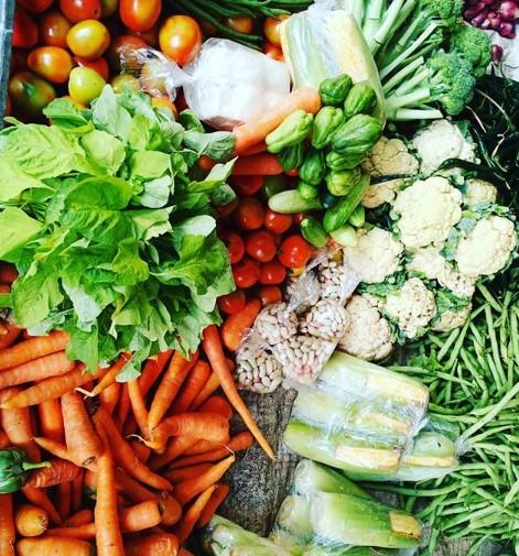 8 Macam Sayuran yang Baik Untuk Diet Sehat
