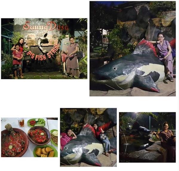 Tempat pemancingan di Bekasi Saung Desa Pebayuran Bekasi
